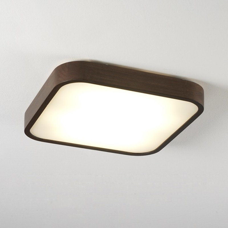 Celling lamp - NATURE 20017/50