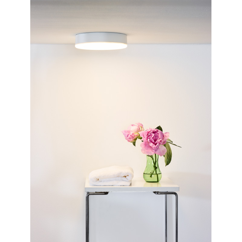 Ceiling lamp CERES LED Ø 21,5 cm
