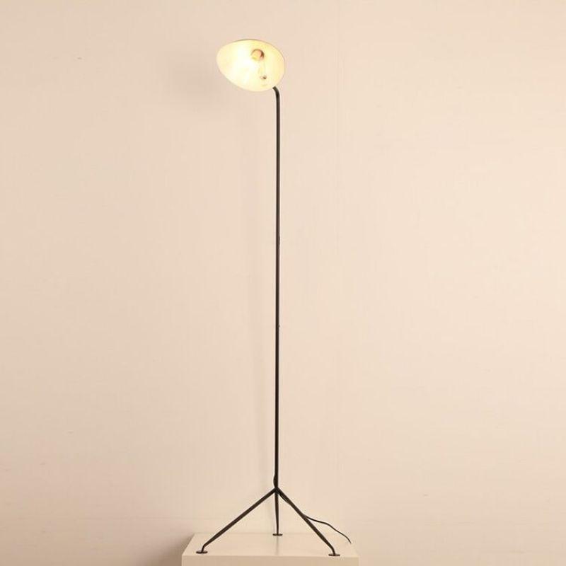 Floor lamp SK-3002F-1