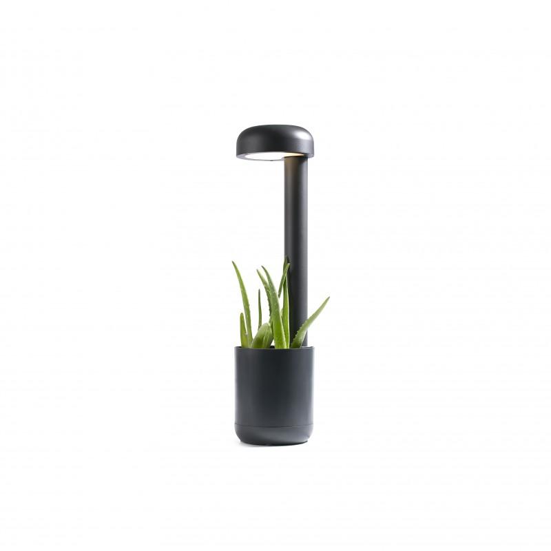 Accessory lamp GROW